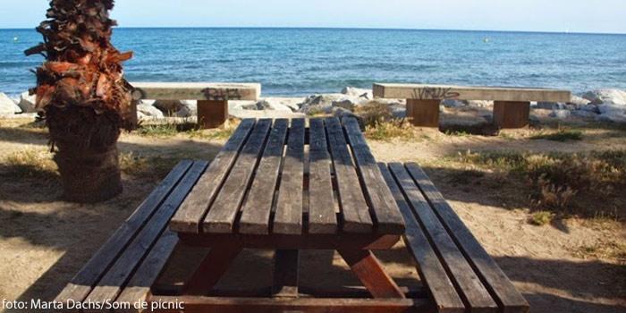Picnic Y Playa Combinacion Perfecta Ideas De Viaje